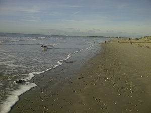 West Wittering sand