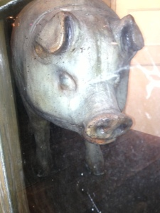 pig in a shop