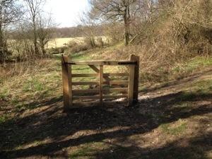 gate in woodd