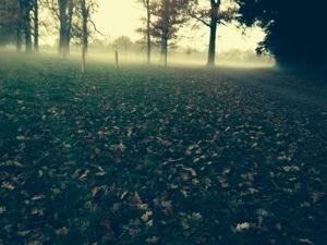 fog in arundel
