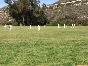 cricket in cyprus