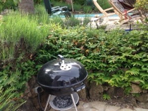 barbecue in Valbonne