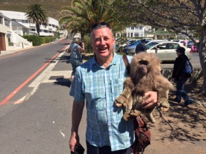 A Baronet with a baboon...